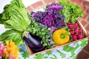 Zelenina obsahuje velké množství vlákniny