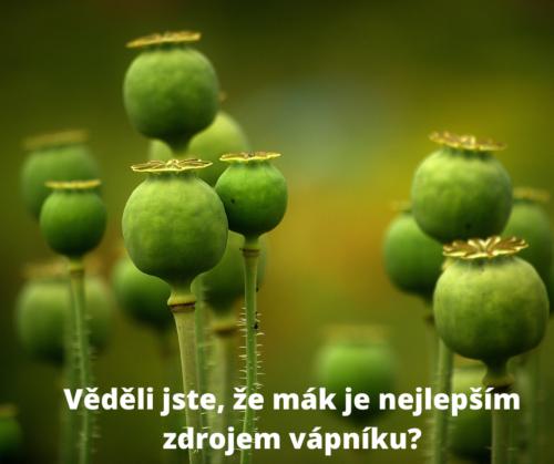 Zelené makovice